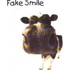 Fake Smile (John Mitchell) EP
