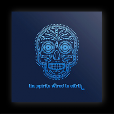 Tin Spirits ~ Wired To Earth CD